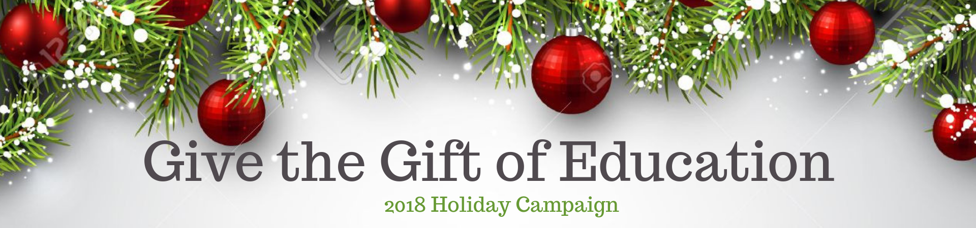 Give the Gift of Education (4)